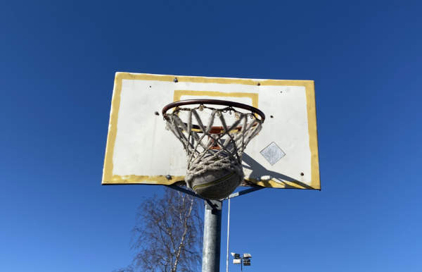 Everything You Need to Know About Basketball Hoop Nets