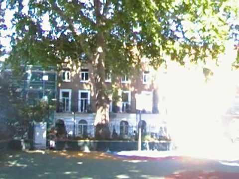 Argyle Square Public Basketball Court