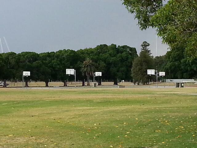 Maccallum park