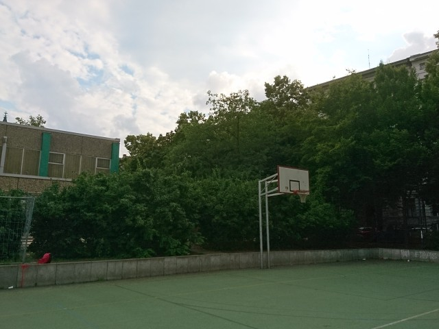 Basket of full court - South West side