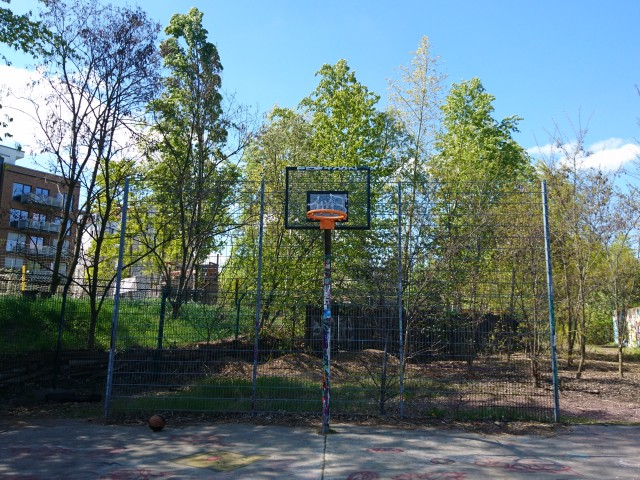 Basket (only one)