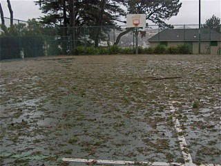 The court in Holly Park after a big storm in 2008.