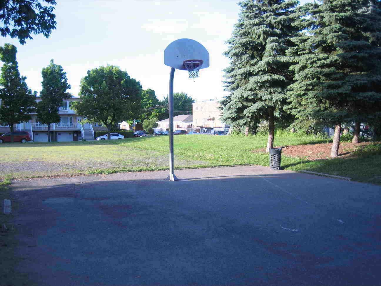 Terrains Basket Montreal