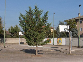 The basketball court in Lonate Pozzolo.