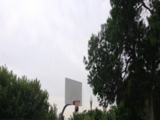 Profile of the basketball court Peavey Field, Minneapolis, MN, United States